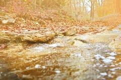Kleine rivier in de herfst Stock Foto