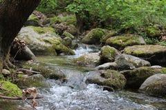 Kleine rivier dichtbij aan Petrich Royalty-vrije Stock Afbeelding