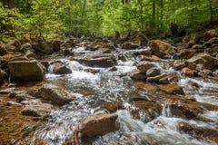 Kleine rivier genoemd Ilse in Harz Duitsland royalty-vrije stock foto's