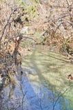 Kleine rivier in Hamilton Pool Royalty-vrije Stock Afbeelding