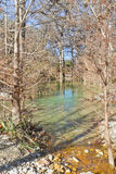 Kleine rivier in Hamilton Pool Stock Foto's