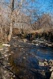 Kleine rivier met een rotsachtige bodem royalty-vrije stock afbeeldingen