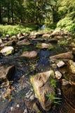 Kleine rivier met stenen in het bos stock afbeelding