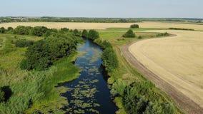 Kleine rivier in platteland in Rusland stock videobeelden