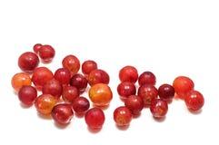 Kleine Rode Druiven Witte Achtergrond Stock Foto's