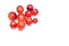 Kleine Rode Druiven Witte Achtergrond Stock Foto