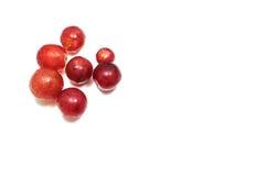 Kleine Rode Druiven Witte Achtergrond Stock Afbeeldingen