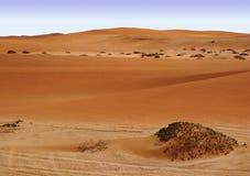 Kleine rode duinen van droge Namib-woestijn in Namibië dichtbij Swakopmund Stock Afbeeldingen