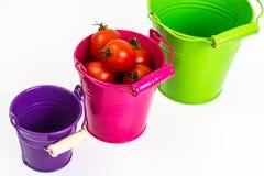 Kleine rode tomaten Royalty-vrije Stock Afbeeldingen