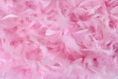Kleine rosafarbene Federn im Stapel | Beschaffenheit Stockfoto