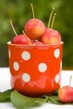 Kleine rote Äpfel Lizenzfreies Stockbild