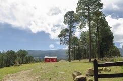 Kleine rote Kabine im Wald stockfoto