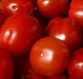 Kleine rote Tomaten Lizenzfreies Stockbild
