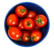 Kleine rote Tomaten Stockfotos