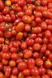 Kleine rote Tomaten im Stapel Stockfotos