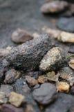 Kleine rotsen met aardige backround stock foto's