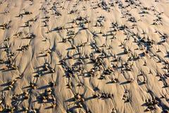 Kleine Rotsen op Strand met Zandkunst bij Zonsondergang Stock Afbeelding