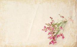 Kleine roze de bloemenachtergrond van Grunge Stock Foto