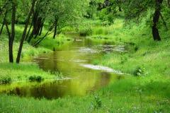 Kleine rustige rivier Stock Foto