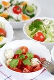 Kleine salades royalty-vrije stock fotografie