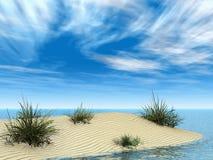 Kleine Sandbank mit Gräsern Stockfotografie