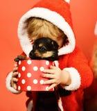 Kleine Sankt hält kleinen Hund in beschmutztem Kasten stockfotos