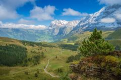 View from Kleine Scheidegg at Grindelwald Berner Oberland, Switzerland. The Kleine Scheidegg is a mountain pass 2,061 metre, situated below and between the Eiger royalty free stock images