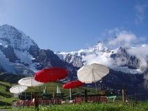 Kleine Scheidegg Zwitserland Stock Foto