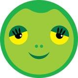 Kleine Schildkröte Stockbild