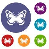 Kleine Schmetterlingsikonen eingestellt Stockfoto