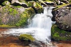 Kleine scrnic waterval in Retezat-bergen Royalty-vrije Stock Afbeeldingen