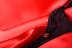 Kleine Sexy Dingen Royalty-vrije Stock Foto's