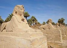 Kleine spinxes am Luxor-Tempel Lizenzfreies Stockfoto