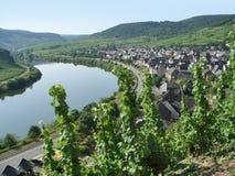 Kleine stad bij rivier Moezel Stock Afbeelding