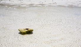 Kleine steen en overzees Stock Afbeeldingen
