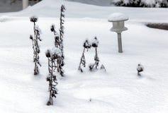 Kleine Sträuche und Gartenlichter unter dem Schnee Stockbild
