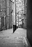 Kleine Straße Stockbilder