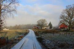 Kleine Straße in der schwedischen Landschaft Lizenzfreie Stockfotografie