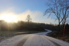 Kleine Straße in der schwedischen Landschaft Lizenzfreie Stockbilder