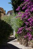 Kleine straat in Grimaud Royalty-vrije Stock Fotografie