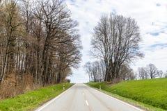 Kleine straat met weide en bomen Stock Foto's