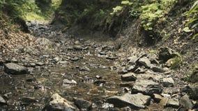 Kleine stroom in bergen stock videobeelden