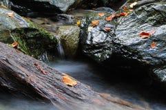 Kleine stroom in de herfst stock afbeelding