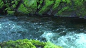 Kleine stroom die door bemoste rotsen stromen stock footage