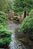 Kleine stroom die tussen grasrijke banken stromen Stock Afbeelding