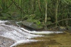 Kleine stroom in het bos Stock Foto