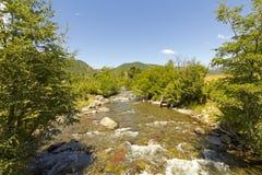 Kleine stroom in het Nationale Park van Nalcas, Chili Royalty-vrije Stock Fotografie