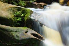 Kleine stroom in wildernis Royalty-vrije Stock Afbeelding