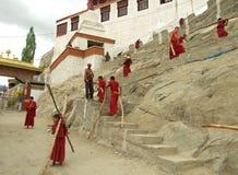 Kleine tibetanische buddhistische Mönche, die Brennholz tragen Stockfoto