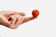Kleine tomaat op vrouwelijke vingers Stock Afbeeldingen
